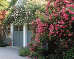 english garden designs. Interesting Garden Inside English Garden Designs D