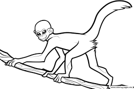 Monkey Printable Coloring Pages With Free Printable Monkey For Kids