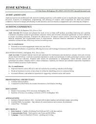 auditor resume samples