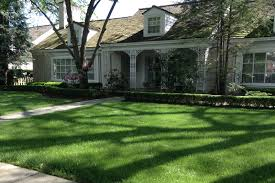 residential landscape design maintenance
