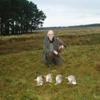 Kaye banks - teacher naturalist - Scottish Wildlife Trust | LinkedIn