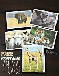 FREE Printable Animal Cards for montessori activities | Montessori  activities, Free preschool printables, Animal cards