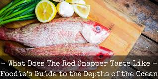 What Does Red Snapper Fish Taste Like