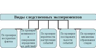 Процессуальное оформление и оценка результатов следственного  Виды следственных экспериментов