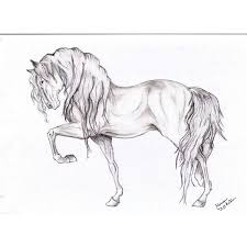 horses drawings. Simple Horses Horse Drawing  Liked On Polyvore And Horses Drawings O