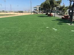 fake grass carpet. Fake Grass Carpet A