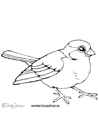 Bird Pictures To Color Refinancemortgageratesco