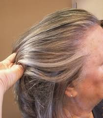 lowlights and highlights added to grey hair hair by janet the