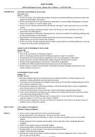 Ecommerce Resume Sample Ecommerce Manager Resume Samples Velvet Jobs 4