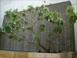 Small Picture water wall features for patios Wall Fountain Creates A