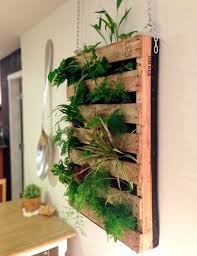 cool diy green living wall projects for