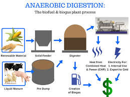 Anaerobic Digester Design Example Anaerobic Digestion Gulf Coast Environmental Systems