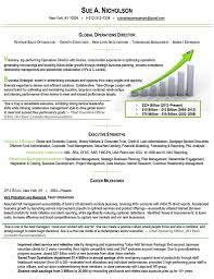 Executive Resume Samples Free Examples Punchy Resumes Sample Writing