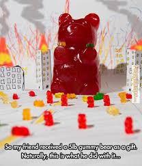 FunnyMemes.com • Funny memes - [5lb gummy bear] via Relatably.com