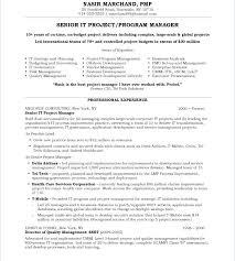 Enterprise Project Management Resume Program Manager Resume Examples