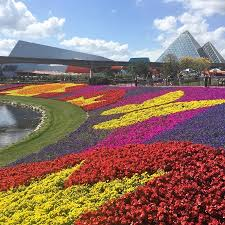 disney flower and garden. Disney Epcot Flower \u0026 Garden Festival 2017- Colorful Blooms. And A