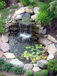 Pond Design During The Summer Algae Growth Can Be A Huge Problem In Garden