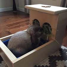 rabbit hay feeder with litter box
