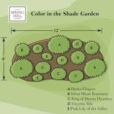 color in the shade garden spring hill