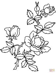 Hand Getekend Ouline En Rode Rozen Bloemen Stockvector Inside