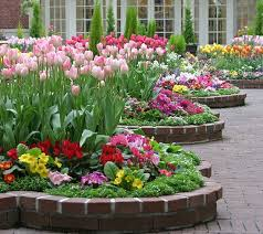 Mesmerizing Tulip Flower Beds That Will Fascinate You