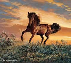wild horses mustang wallpaper. Mustang Horse Homepage Wallpaper To Wild Horses