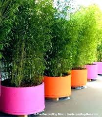 large outdoor flower pots plant pots large outdoor garden flower big lots large outdoor flower