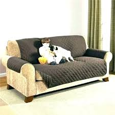 best pet friendly sectional sofas dog leather couch sofa extraordinary couches cat burrow the f