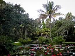 picture of mckee botanical garden vero