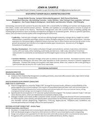 Director Sample Resume Director Manager Resume Executive Resume Resume Examples