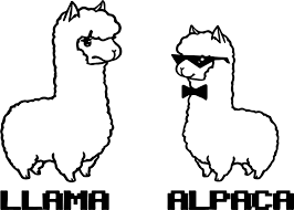 Llama And Alpaca Coloring Page Jpg