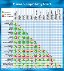 Marine Animal Compatibility Chart