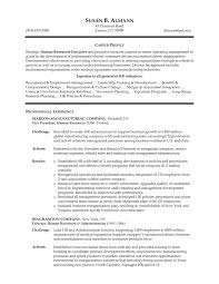 Hr Executive Resume Sample Examples Sidemcicek Com Human Resources