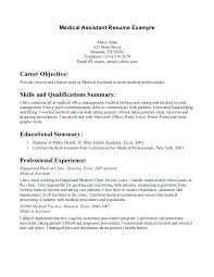 Resume Examples For Professionals Best Ideas Of It Professional ...