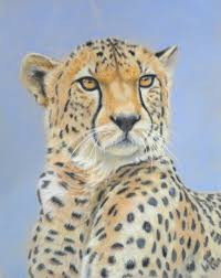 cheetah pastels lesson by julie longdon now available on arttutor soft pastel drawingssoft