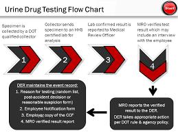 Drug Testing Flow Chart Beginner Fta Drug And Alcohol Program Management Delivered