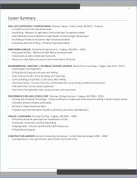 Good Summary For Resume Unique Good Summary For Resume Pretty Examples A Resume Elegant Summary