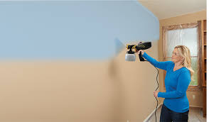 spraying interior for best results