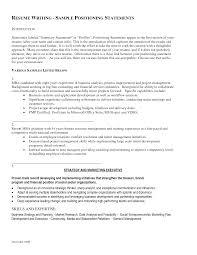 sample resume profile statements resume sample database profile resume sample