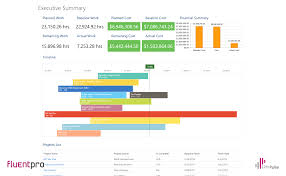 Executive Summary Project Management Dashboard Timeline
