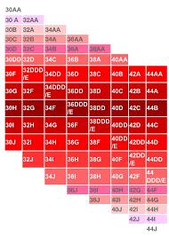 34dd Size Chart
