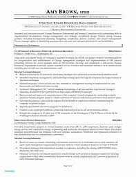 Hr Director Resume Examples Beautiful College Resumes Examples Hr