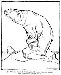 Small Picture Polar Bear Family Coloring Page Polar bear Worksheets and Bears