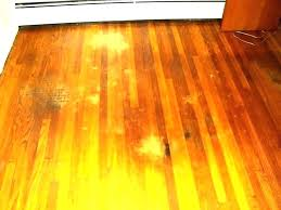 dog urine sn on hardwood floor how to remove pet sns from