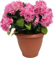 <b>Artificial Hydrangea</b> Flower <b>Plant Bush</b> Shrub in Container Patio ...