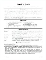 Information Analyst Resume Analytical Writing Essay Information