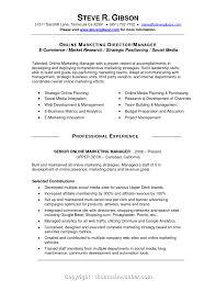 Resume Job Description Examples Socialediaanager Resume Description Samples Pdf Cv Template