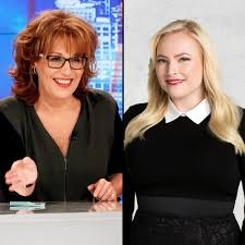 Joy Behar Tells Meghan McCain She 'Didn ...
