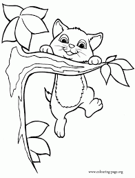 20 Animal Cute Kitty Coloring Pages Ideas And Designs