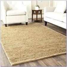 indoor outdoor area rugs 8x10 indoor outdoor area rugs s indoor outdoor rugs indoor